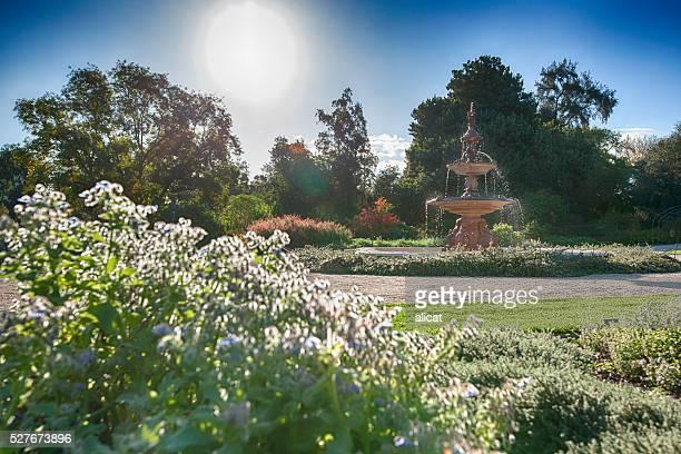Fonte-Adelaide Jardins Botânicos de Sydney