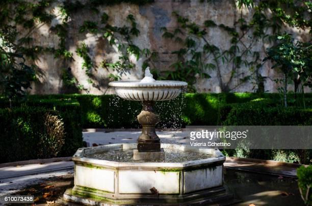 Fountain at Alambra's garden, Granada