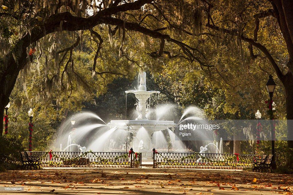 'Fountain in Forsyth Park Savannah, Georgia, USA'