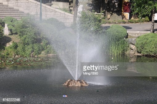 Fountain in the pond : Stock Photo