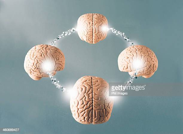 Four connected brains