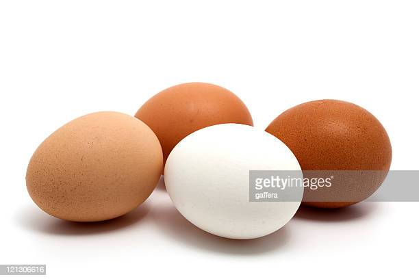 Four eggs in all the possible different colors