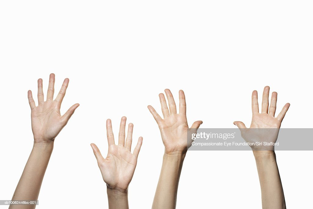 Four hands on white background : Stock Photo