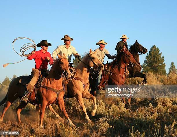 Four just horsemen