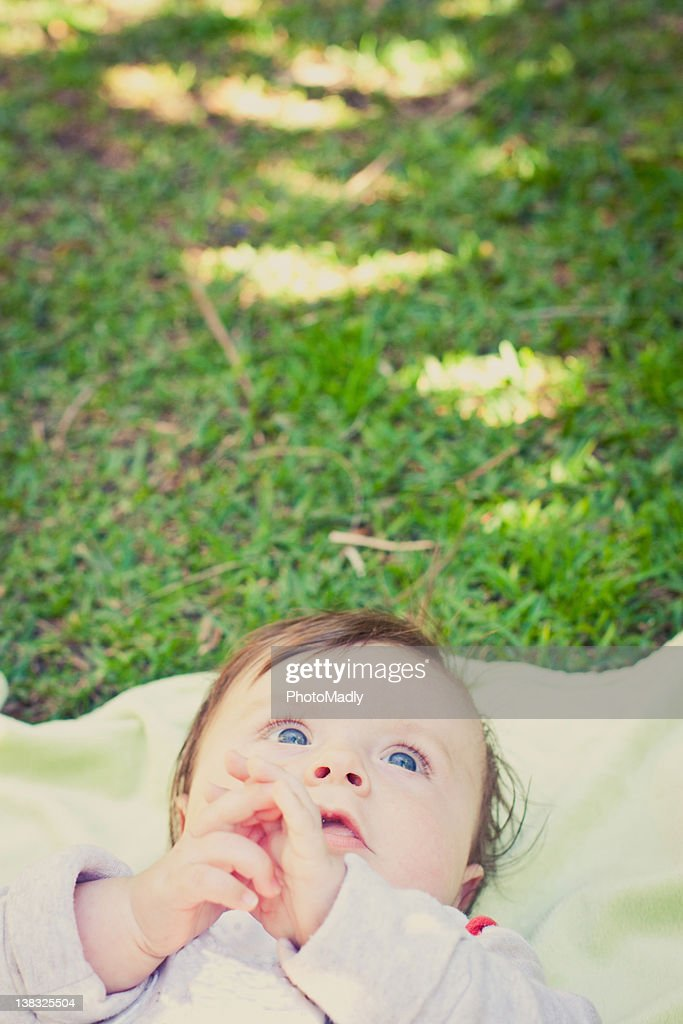 Four month old baby boy lies on blanket in grass : Stock Photo