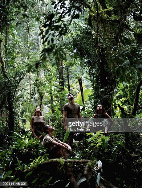 Four people in jungle looking upward