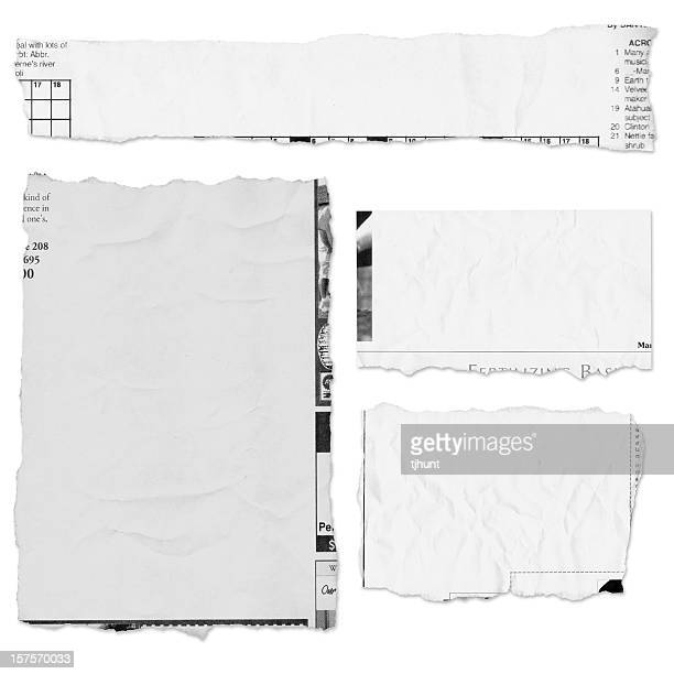 Four pieces of a torn newspaper page on white background