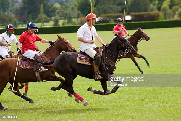 Four polo players playing polo