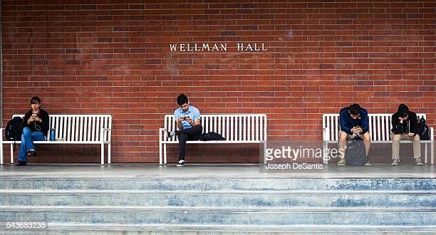 Four university students sitting on white benches focusing intently on their smartphones