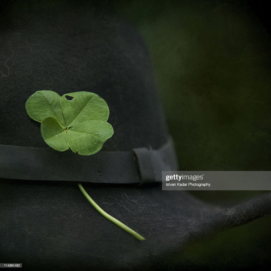 Four-leaf clover  pinned in a black hat. : Stock Photo
