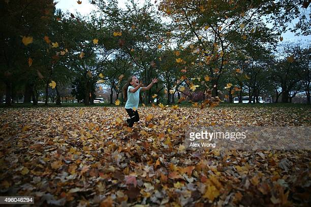Fouryearold local resident Hailey Bruno plays with the fallen leaves her father throws at her at the Tidal Basin on a warm evening November 6 2015 in...