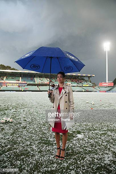 Fox Sports presenter Tara Rushton stands on a hail stone covered Pirtek Stadium prior to kick off for the round 27 ALeague match between the Western...