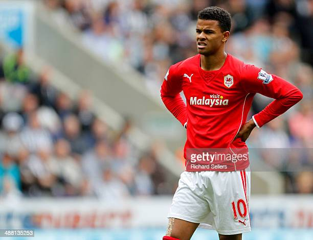 Fraizer Campbell of Cardiff City after the Barclays Premier League match between Newcastle United and Cardiff City at St James' Park on May 03 2014...