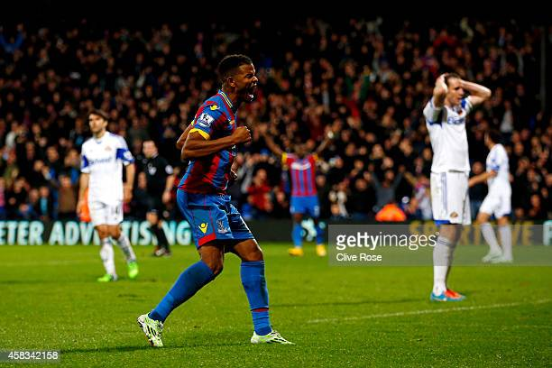 Fraizer Campbell of Crystal Palace celebrates after Wes Brown of Sunderland scores an own goal to level the nscores at 11 during the Barclays Premier...