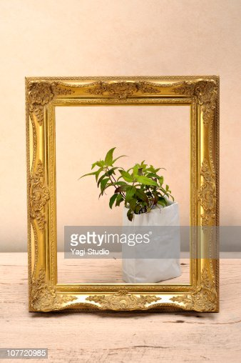 Frame and herb