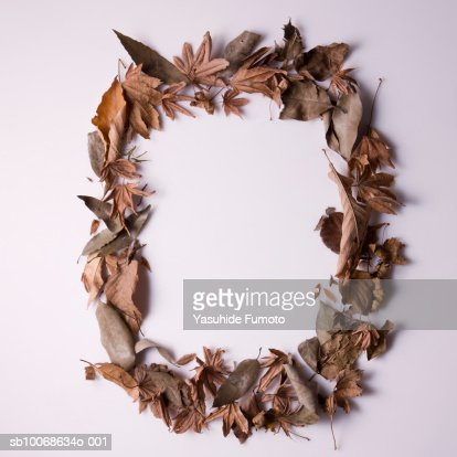 Frame made of dead leaves : Stock Photo