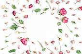 Flowers composition. Frame made of dried rose flowers on white background. Flat lay, top view