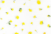 Flowers composition. Frame made of yellow flowers on white background. Top view, flat lay