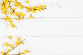 Flowers composition. Frame made of yellow flowers on wooden white background. Easter, spring, summer concept. Flat lay, top view