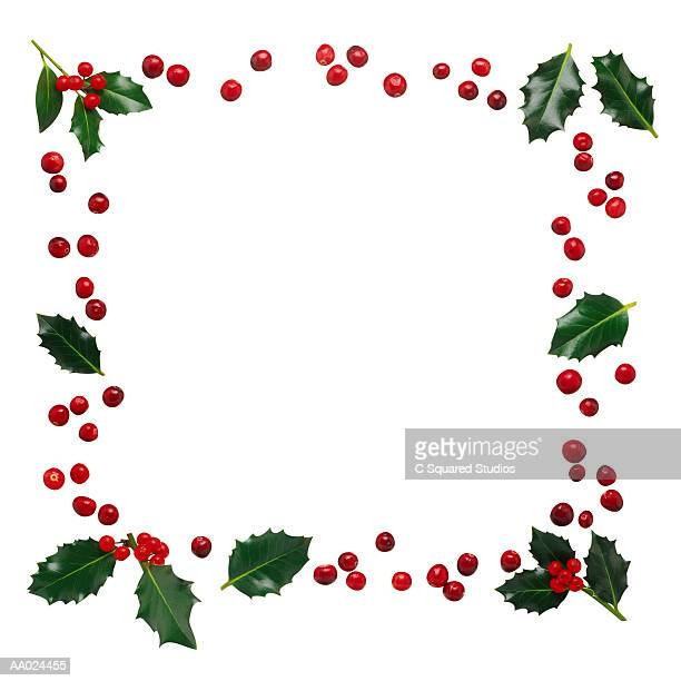 Frame of Holly and Berries