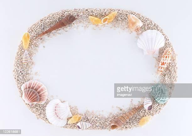 Frame of Shell
