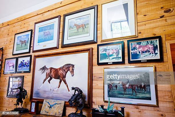 Framed pictures of race horses hang on the wall at the Rietfontein ranch and stud farm in Karoo Colesberg South Africa on Thursday Dec 1 2016 Golfing...