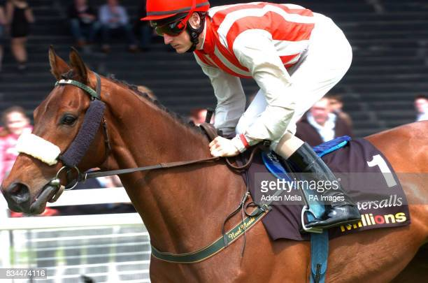 Fran Berry on Arch Rebel in the Tattersals Gold Cup at Curragh Racecourse Co Kildare Ireland