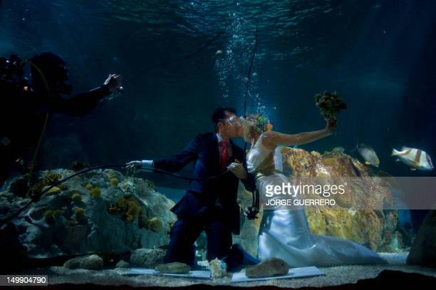 Fran Calvo and Monica Fraile celebrate their wedding in a Sea Life Aquarium on August 6 2012 in Benalmadena where two couples took the opportunity to...