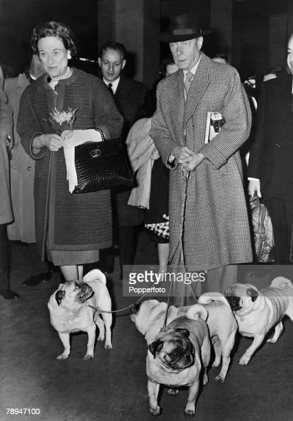 France 3rd May 1960 The Duke and Duchess of Windsor arrive in Paris with their 4 pet dogs after travelling from America