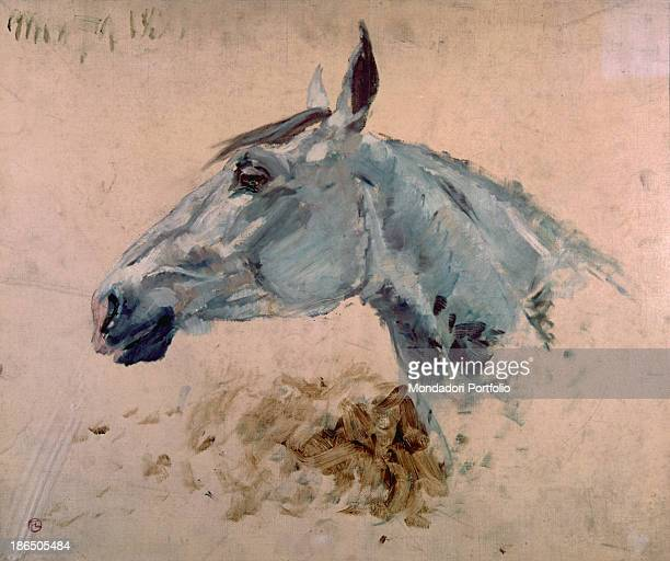 France Albi ToulouseLautrec Museum Whole artwork view Sketch for the head of a horse on a white background