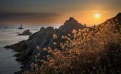 France, Bretagne, Cap Sizun, Pointe du Raz, sunset