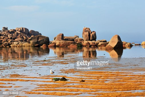 France, Bretagne, Tregastel, Granite coast
