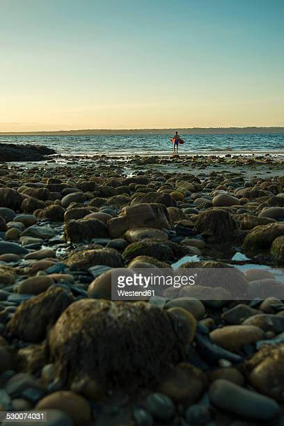 France, Brittany, Camaret-sur-Mer, surfer on the beach at sunset