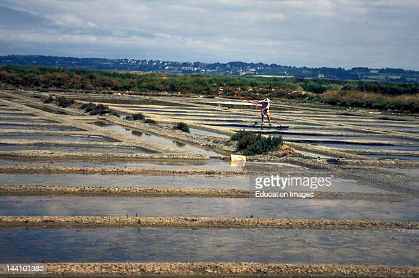 France Brittany Guerande Peninsula Working The Salt Marshes