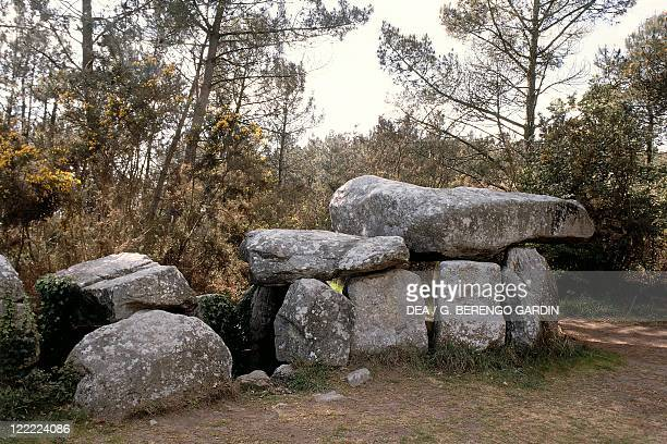 France Brittany Surroundings of Carnac Prehistoric megalithic stone alignments ManeKerioned dolmen