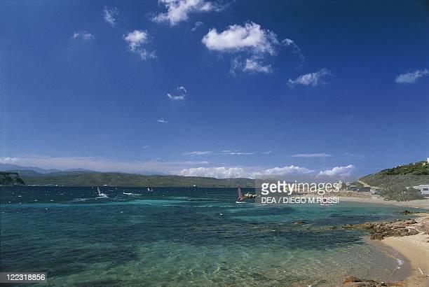 France Corsica CorseduSud Surroundings of Porto Vecchio Santa Manza Bay