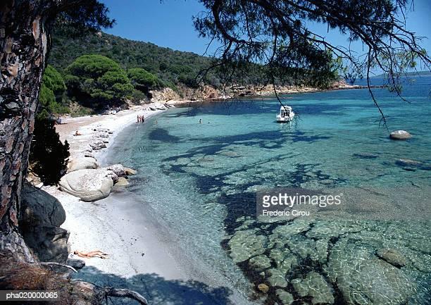 France, Corsica, seashore