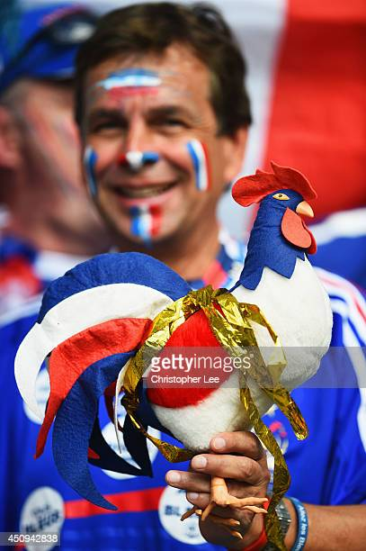France fan enjoys the atmosphere prior to the 2014 FIFA World Cup Brazil Group E match between Switzerland and France at Arena Fonte Nova on June 20...