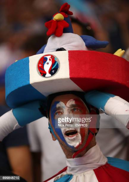 A France fan in the stands wearing fancy dress