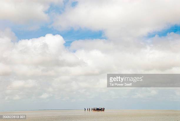 France, Mont St. Michel, tourists crossing tidal flats