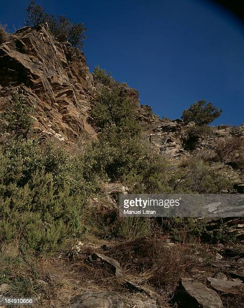 France November 25 in the Cevennes The ravine where one has found the body of Pauline Laffont three months after his disappearance