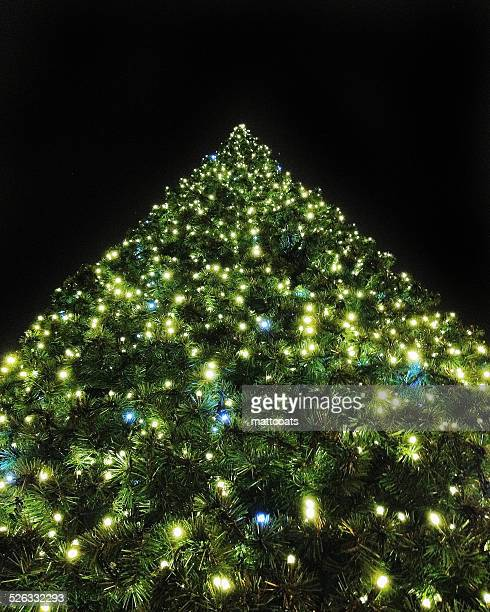 France, Paris, Christmas tree