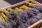 France, Provence, Aix-en-Provence, wooden box with bunches of lavender