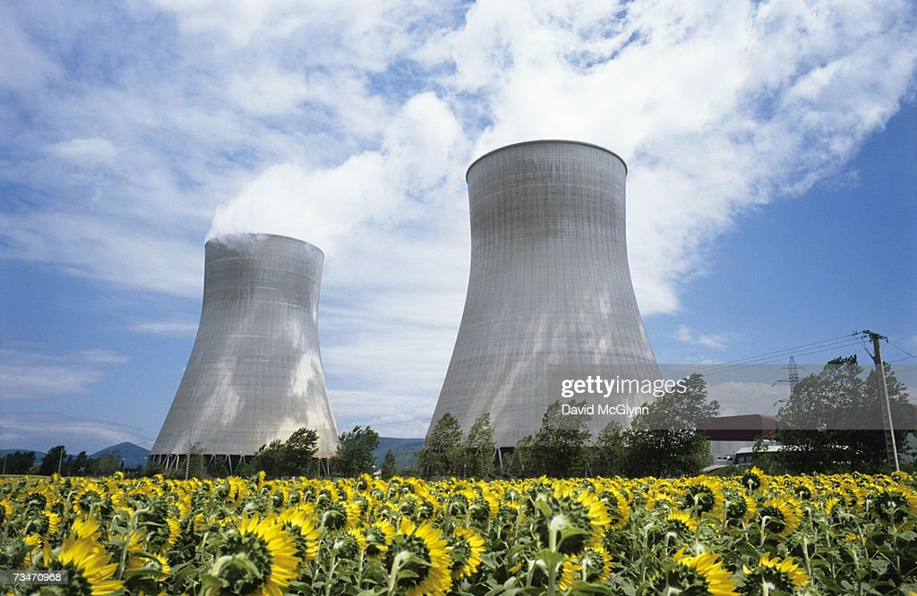 France, Rhone, Tricastin Nuclear Power plant, sunflowers in foreground