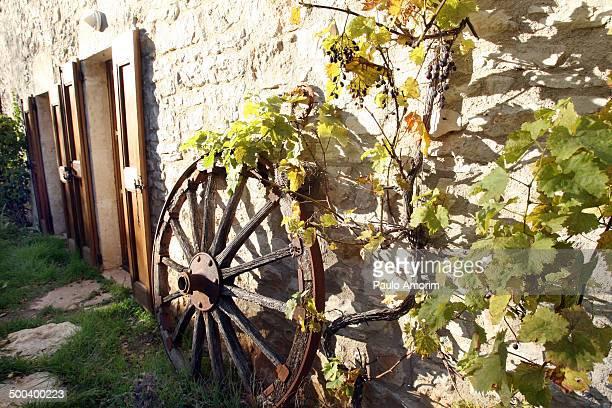 France rural