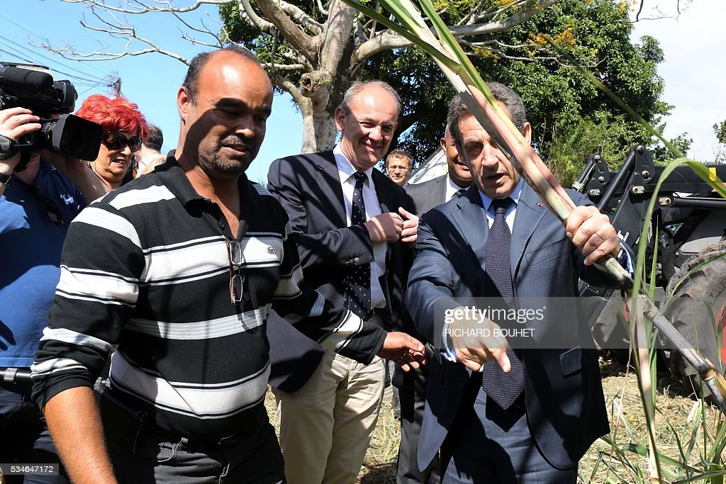France's right-wing Les Republicains (LR) party president Nicolas Sarkozy holds a sugar cane during a visit in sugar cane field with local farmers to speak in favour of an adaptation of european regulations for La Reunion island to preserve the sugar cane industry in Saint Andre, on May 27, 2016. / AFP / RICHARD