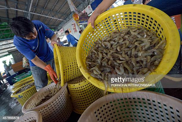 FranceThailandfishingfoodrightsworkFOCUS by Emmanuelle Michel with Delphine Thouvenot Workers weight prawns at a market in Samut Sakhon province a...