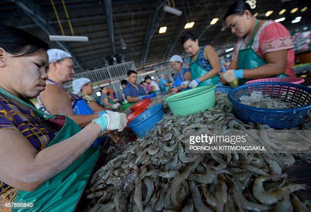 FranceThailandfishingfoodrightsworkFOCUS by Emmanuelle Michel with Delphine Thouvenot Workers select prawns at a market in Samut Sakhon province a...