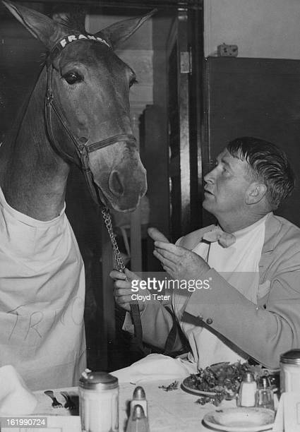JUL 26 1951 Francis the talking mule decided it was time to step out Wednesday The talented anim Dchct Post Photos teamed up with a sidekick Chill...
