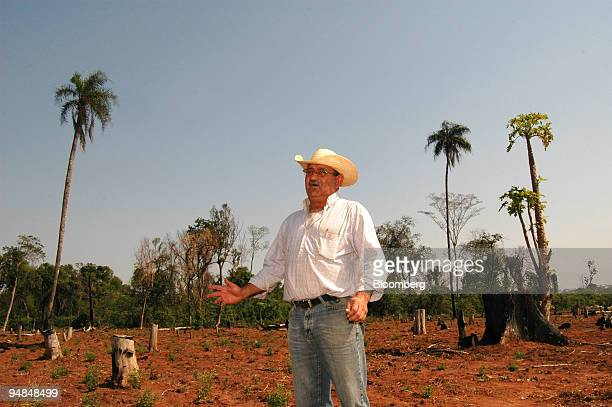 Francisco Recalde farmer and exporter stands in a stevia field that has been harvested in Ybycubua Paraguay on Tuesday Sept 9 2008 Stevia has...